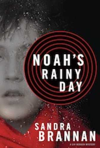 Noah's Rainy Day cover