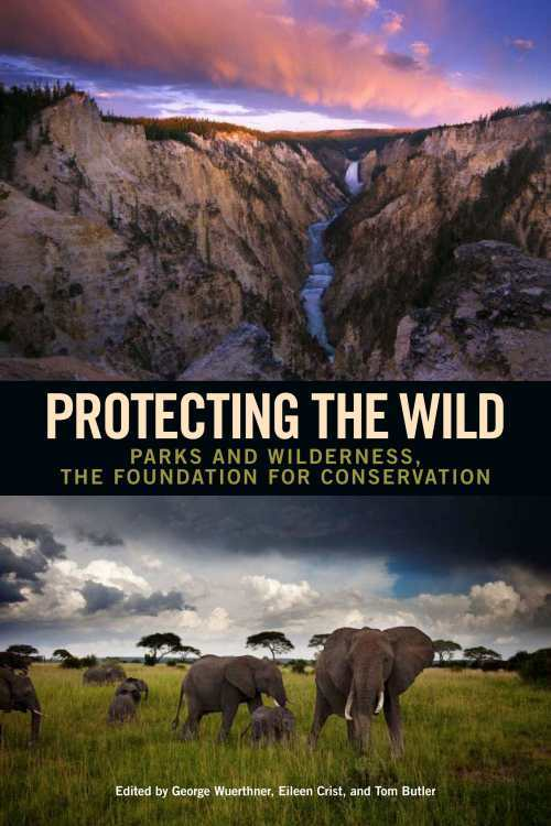 protecting the wild cover