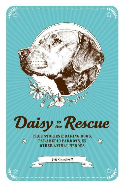 daisy to the rescue cover