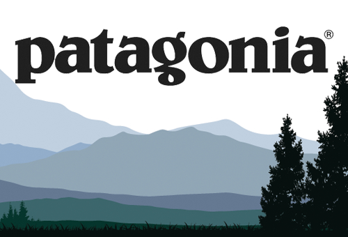 Patagonia image and mountain and pine trees background