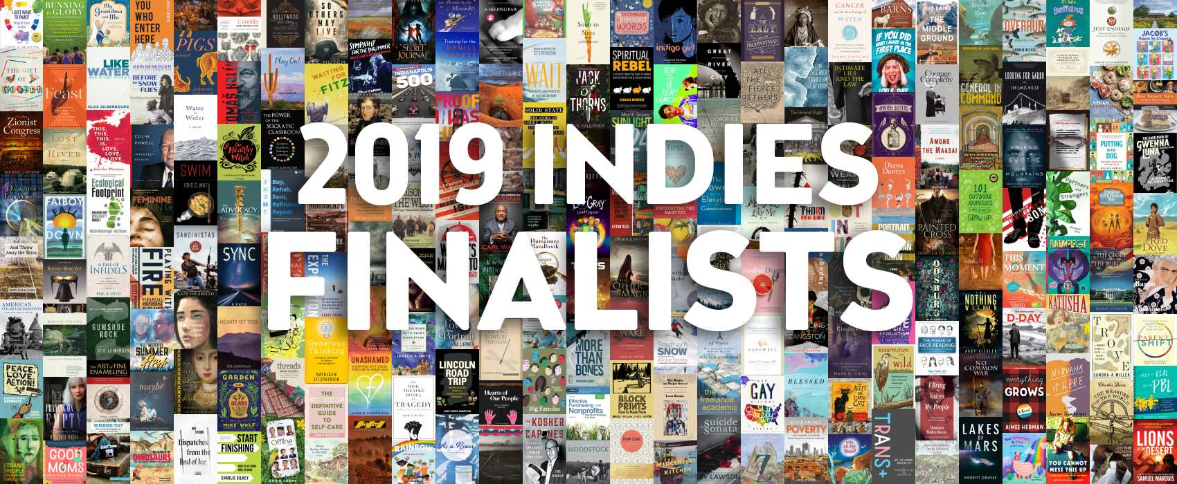 """2019 INDIES Finalists"" on top of collage of finalists' book covers."