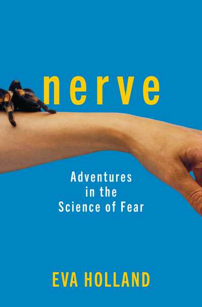 Nerve Cover