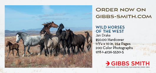 Order now on Gibbs-Smith.com Wild Horses of the West Jan Drake $50.00 Hardcover 11 3/4x10in, 224 pages 200 color photographs 978-1-4236-5530-5 Gibbs Smith Enriching and inspiring humankind since 1969