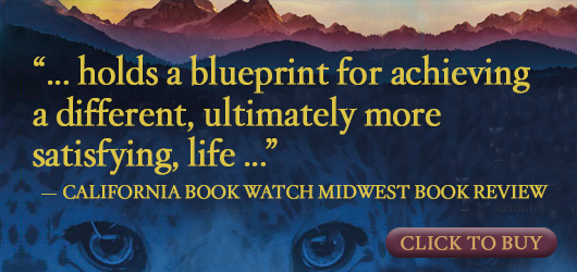 """""""…holds a blueprint for achieving a different, ultimately more satisfying, life…"""" California Book Watch Midwest Book Review Click to buy"""