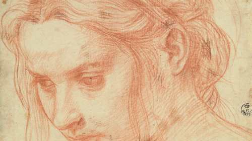 Who You Gonna Call Michelangelo Perhaps Or Leonardo Da Vinci Raphael Ian Correggio Not If Wanted The Best Because All Those Guys Read More