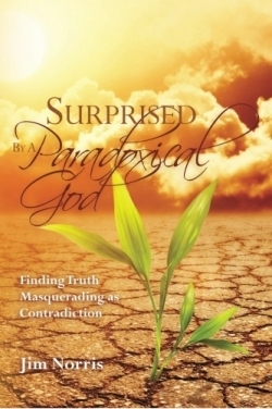 Review Of Surprised By A Paradoxical God 9780615541297 Foreword Reviews