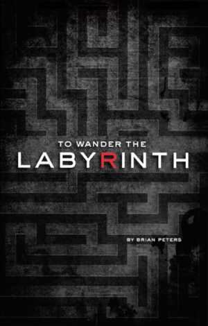 To Wander the Labyrinth Cover