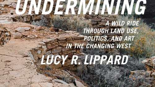 Books Weve Reviewed By Lucy R Lippard Foreword Reviews